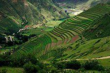sacred_valley_pisaq_terrace